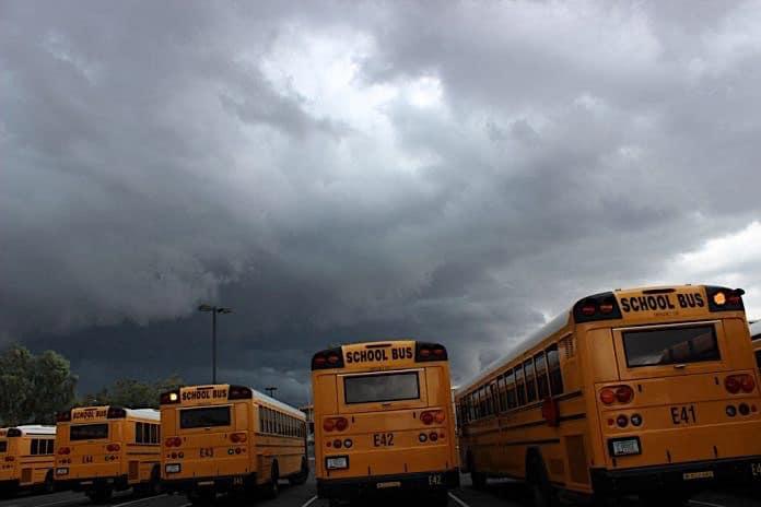 Stock photo of school buses.