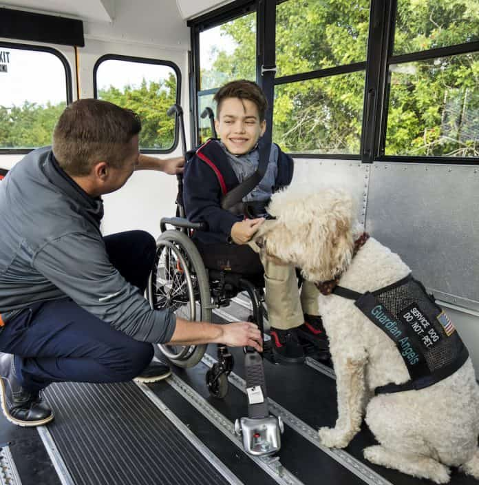 Service animal on a school bus - image courtesy of Q'TRAINT/Sure-Lok.