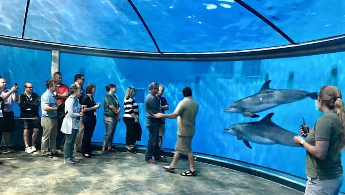 TD Summit, STN EXPO Indy 2019, was held at the Indianapolis Zoo's Dolphin Pavilion.