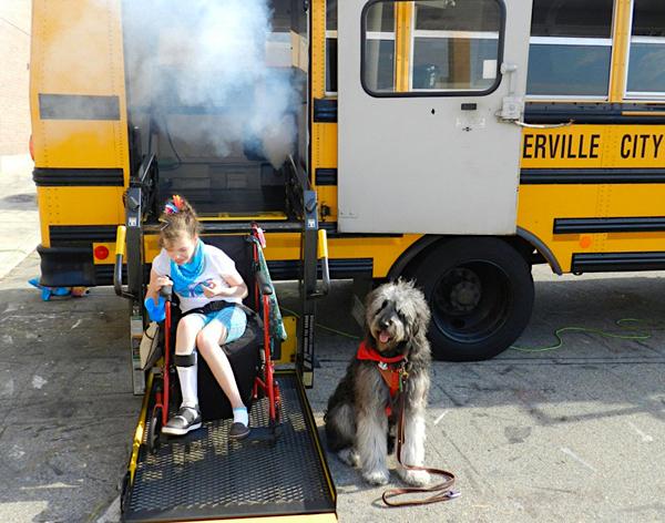 Ohio training service dog